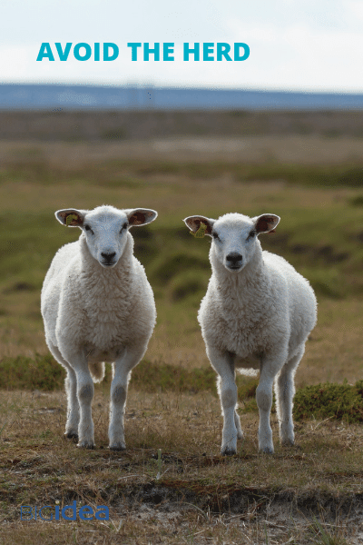 Avoid the herd - Brand Personality Workshop